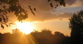Gemafreie Entspannungsmusik und Meditationsmusik für Therapie, Coaching, Yoga, Massage, Ayurveda …